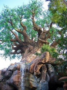DAK_Tree of Life